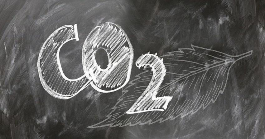 """Científicos  israelíes reconfiguran bacteria para que """"coma"""" dióxido de carbono"""