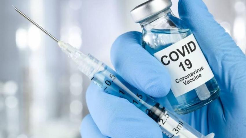 Centro israelí prueba con éxito una posible vacuna contra el COVID-19 en hámsteres